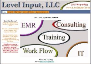 Level Input IT Services
